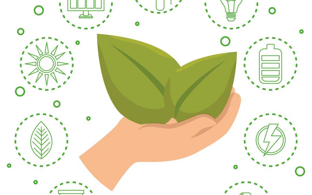 Buenos hábitos que fomentan la sostenibilidad