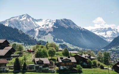 Impulso de la Industria Maderera: Austria versus España